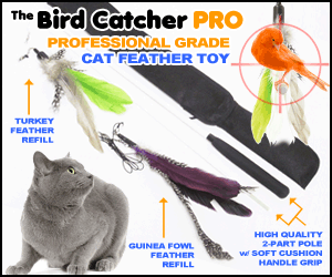 Bird_Catcher_PRO