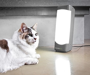 lightbox_for_pets