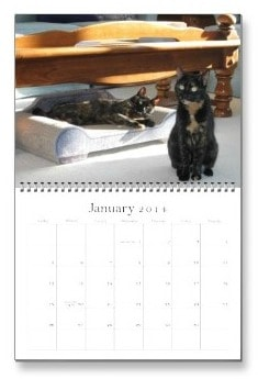 2014 Calendar January