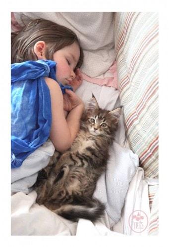 cat_therapy_autistic_child
