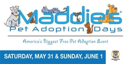 Maddie's_Adoption_Days