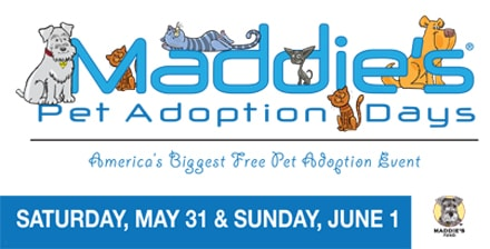 Maddie's_Adoption_Days