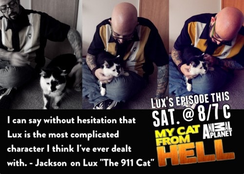 Jackson_Galaxy_Lux_911_cat