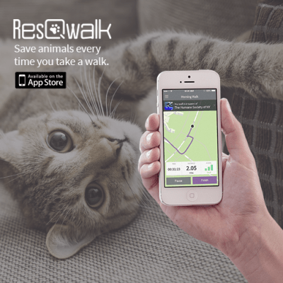 ResQWalk_cat