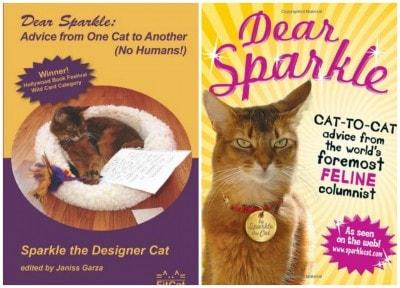 Sparkle_the_Designer_Cat