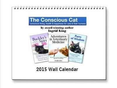 Conscious_Cat_calendar