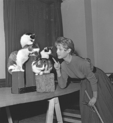 Brigitte_Bardot_with_cats