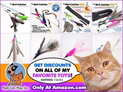 Pets_Can_Play_Birdcatcher