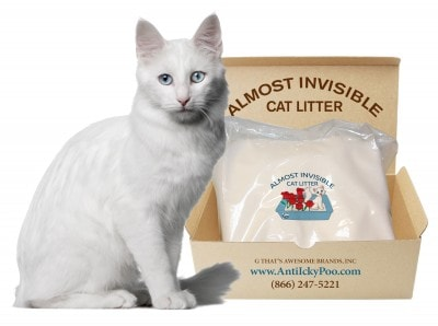 Almost-Invisible_cat-litter