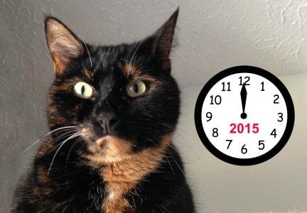 cat-with-clock