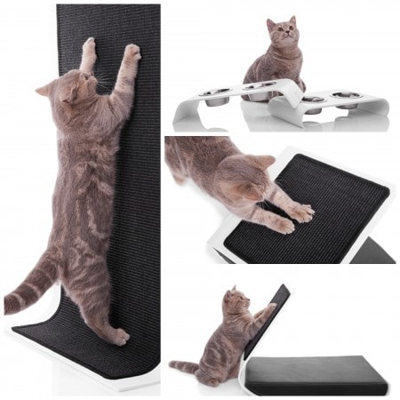 modern-cat-products