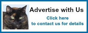 advertise with us new