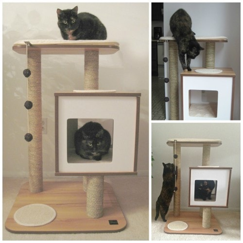 Review Vesper Cat Furniture The Conscious Cat