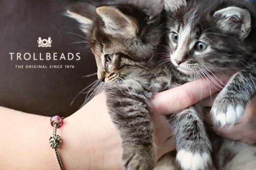 feline-spirit-bracelet