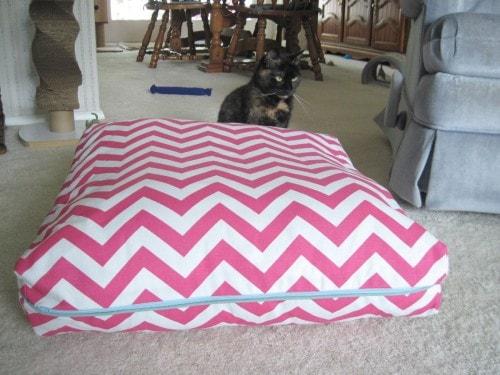 cat-bed