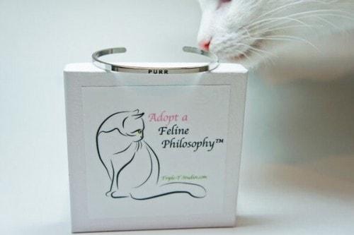 Feline-philosophy-bracelet