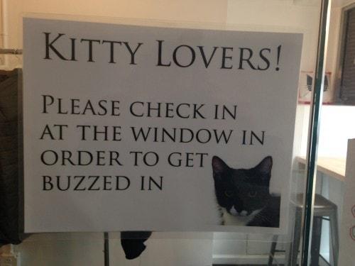 Meow Parlour entry