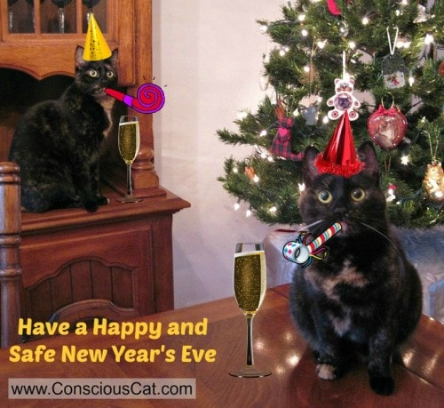 New-Years-Eve-cats