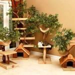 Pet-Tree-Houses