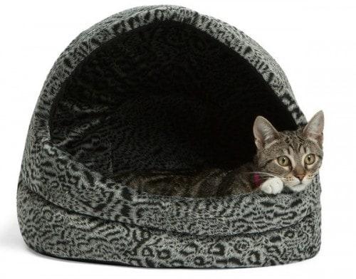 Abby-Pet-Hut