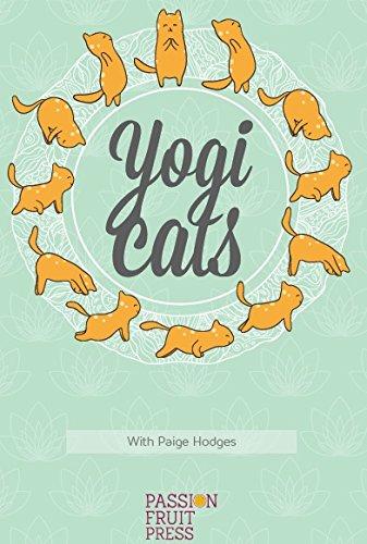 Yogi-cats