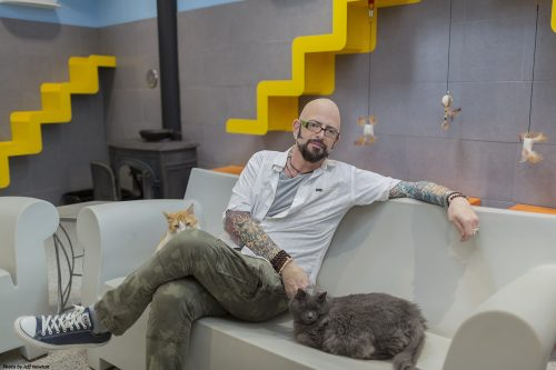 jackson-galaxy-cat-pawsitive