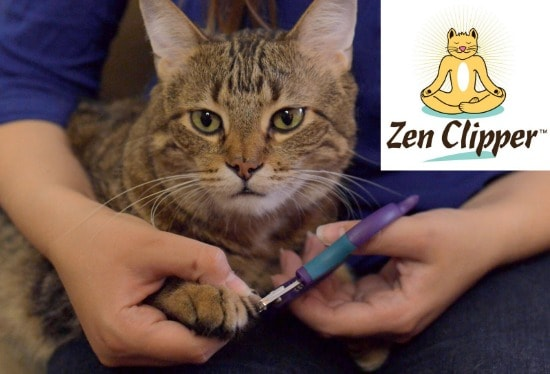 zen-clipper-review