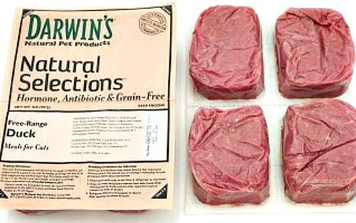 raw-cat-food