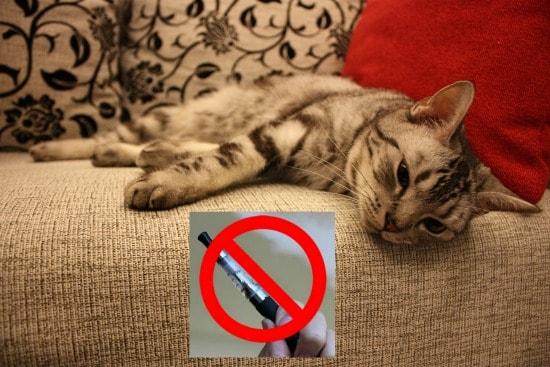 ecigarettes-vaping-toxic-cats