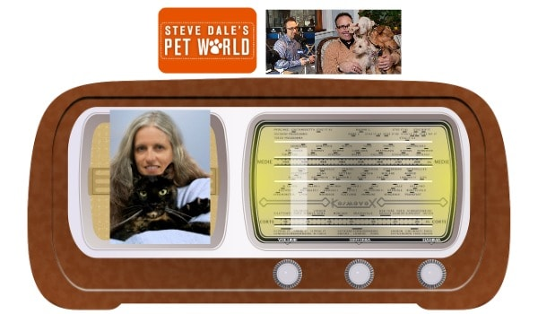 Steve-Dale-radio