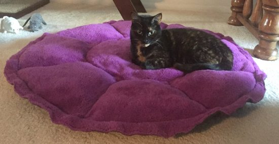 comfy-clamshell-cat-bed