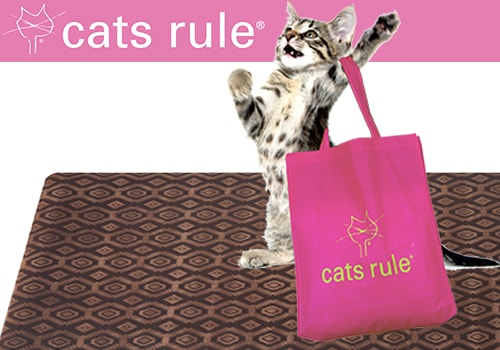 cats-rule