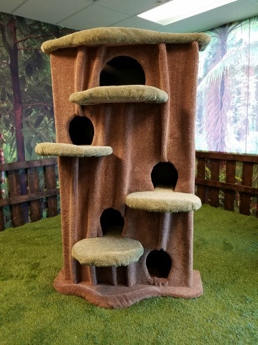 Kitty Cat Condos The New Wave Of Cat Furniture The