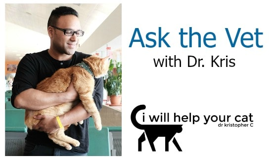 ask-the-vet