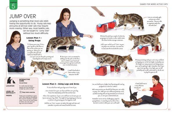 jump-over-cat