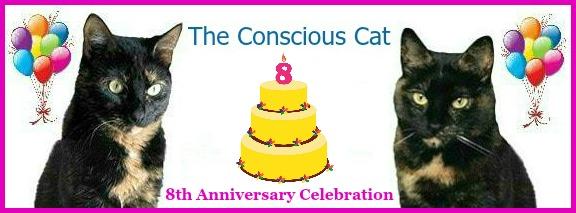conscious-cat-anniversary