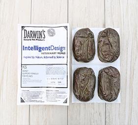 darwins-intelligent-design