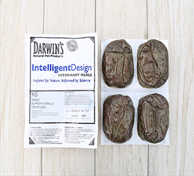 darwins-intelligent-design