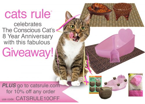 cats-rule-prize-package