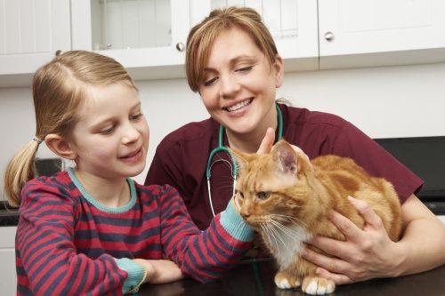 cat-vet-kid
