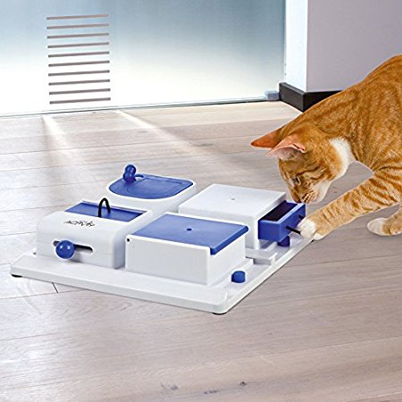 poker-box-trixie-cats