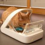 microchip-pet-bowl_