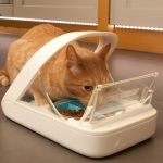 microchip-pet-bowl_