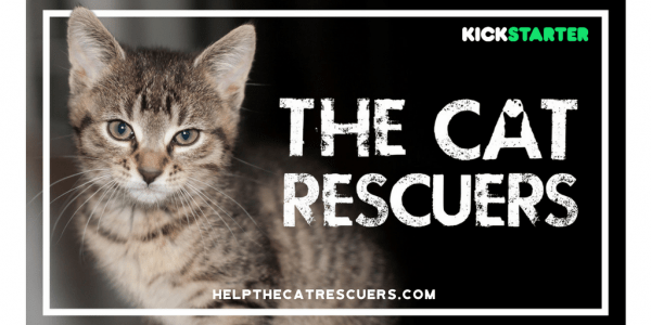 the-cat-rescuers-film