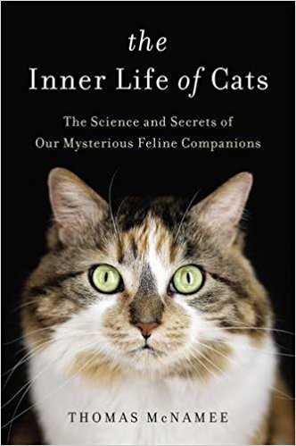 the-inner-life-of-cats