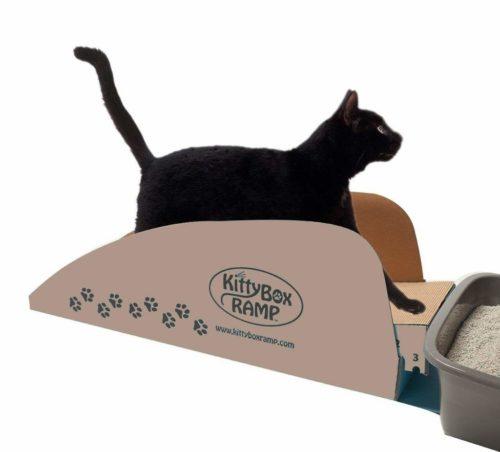 litter -box-ramp