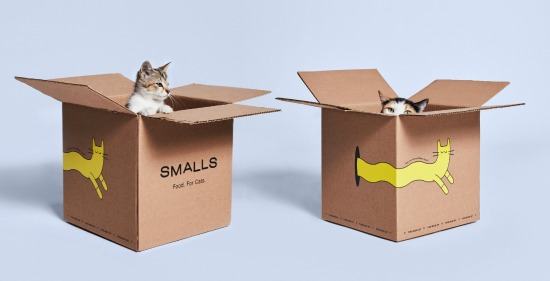 Smalls-food-for-cats
