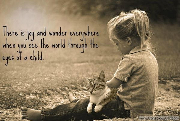 Sunday Quotes Images Simple Sunday Quotes Joy And Wonder  The Conscious Cat