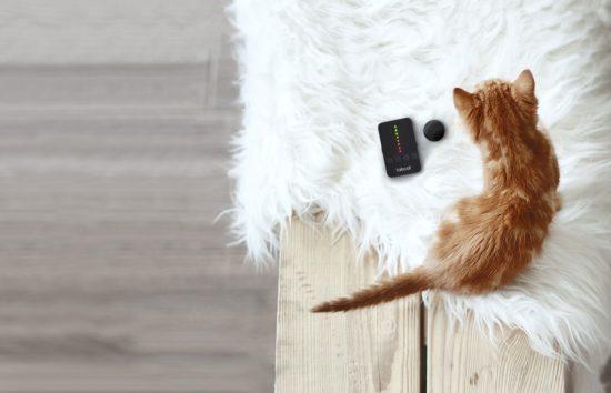 tabcat-tracker
