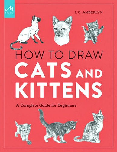 how-to-draw-cats-and-kittens